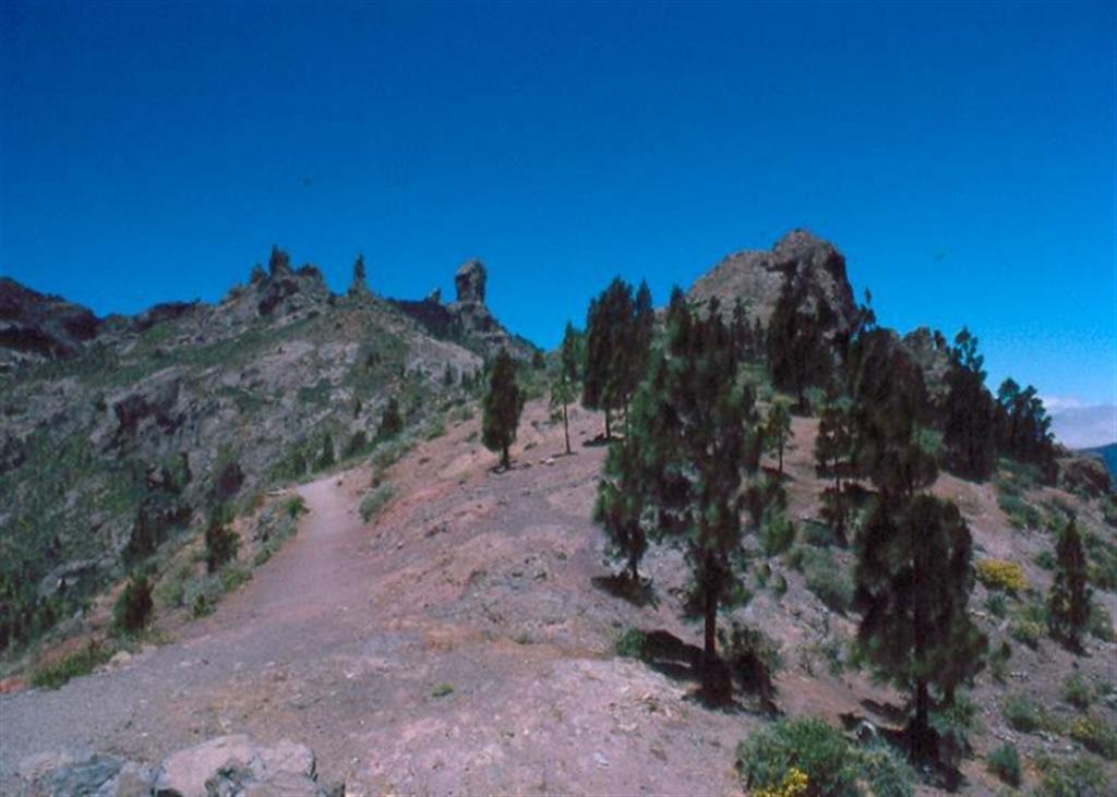 (Roque Nublo). Vista panorámica de la cumbre de Roque Nublo