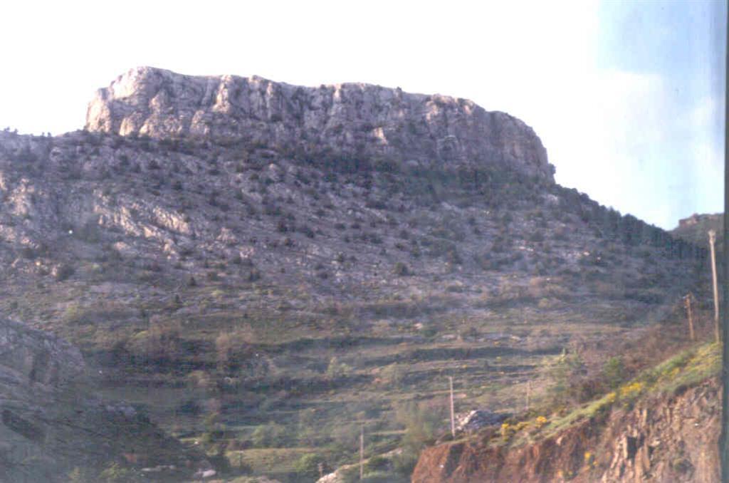 Caliza de Santa Lucía (Devónico).