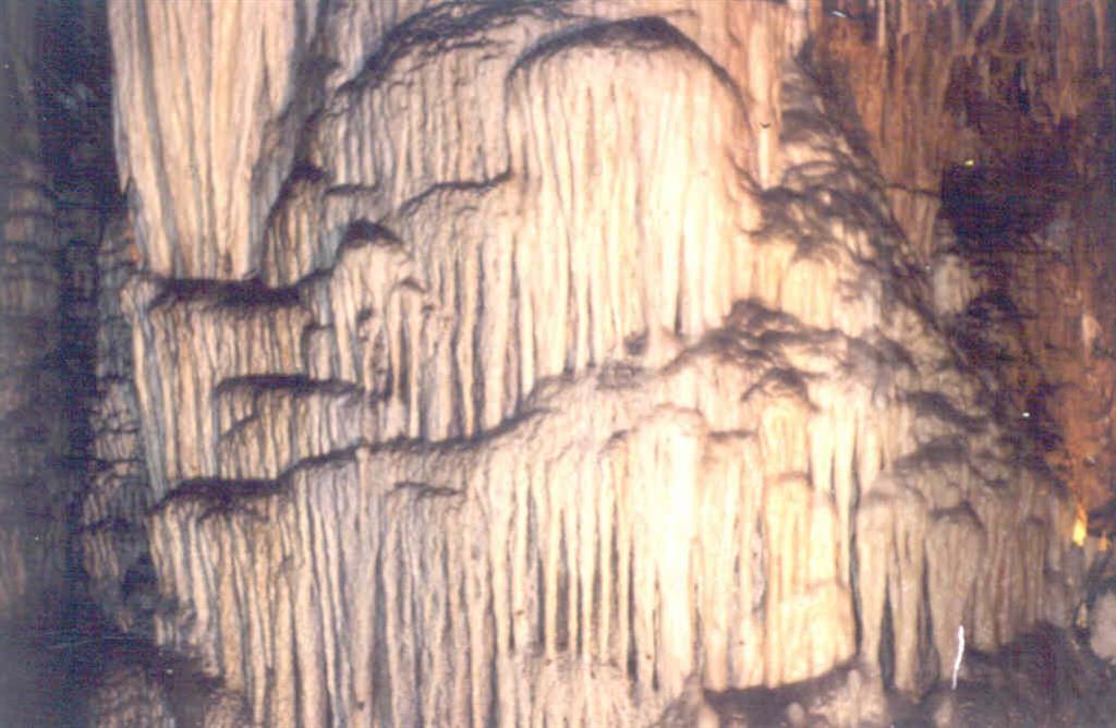 Colada parietal (fotografía tomada en 1981).