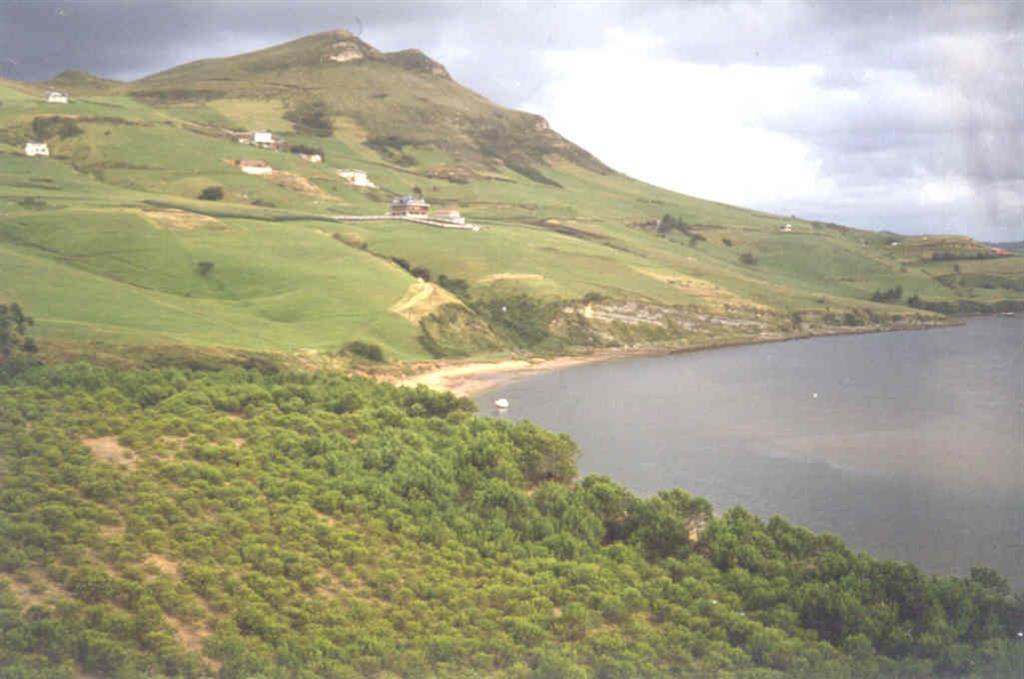 En primer plano dunas remontantes fijadas por la vegetación, al fondo el Cretácico Superior.