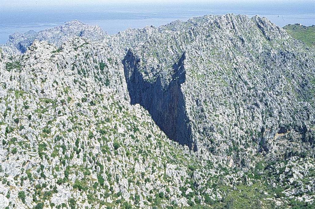 Vista del Torrent de Pareis desde el Mirador d'Entrefoc.