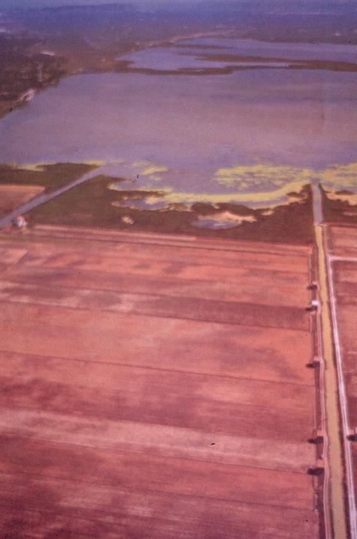 Compuertas de bocana o gola que comunica A.Valencia con Mediterráneo.Las compuertas del Perelló permiten regular el nivel de inundación con fines tanto agrícolas (grado inundación de arrozales) como de protección (desagüe de inundación durante avenidas)