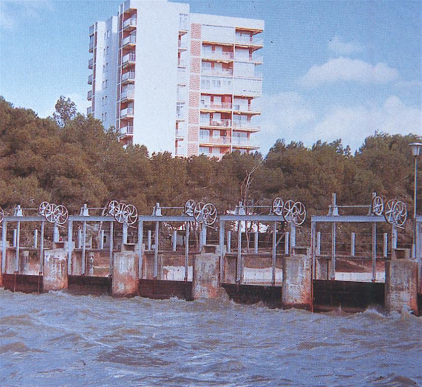 Imagen aérea oblicua de canales de drenaje, arrozales y litoral septentrional de la albufera de Valencia