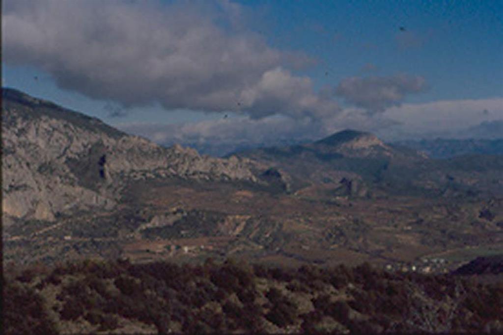 Ibid. Visión más general donde puede observarse el cabalgamiento con el anticlinal de bloque superior sobre los materiales de la lámina cabalgante del Montsec cubierta por sedimentos rojos garumnienses sobre los que se ha excavado la Conca de Tremp