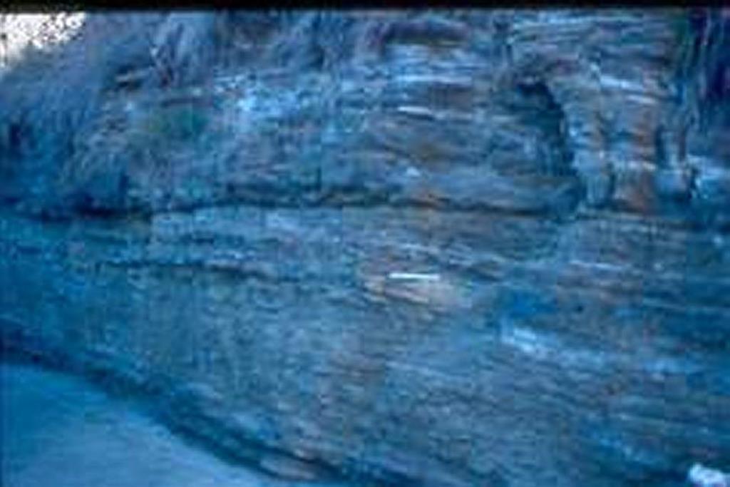 La Règola, camí de Can Xató. Ciclos intramareales: los términos arenosos poseen estratificación sigmoidal (herring bone). Los términos con estratificación lenticular forman las partes altas de los ciclos