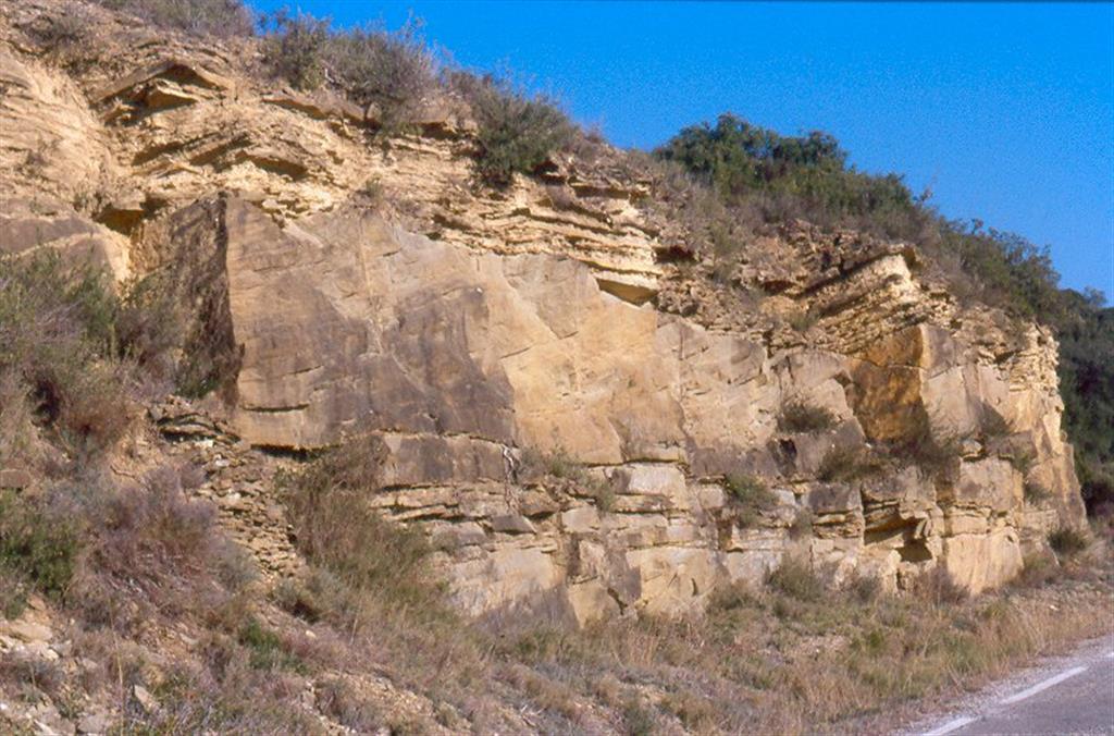 Bar del Manyo. Canal de marea intercalado, con contacto inferior erosivo, en sedimentos intramareales. Las láminas presentan una clara acreción lateral producto de su carácter meandriforme