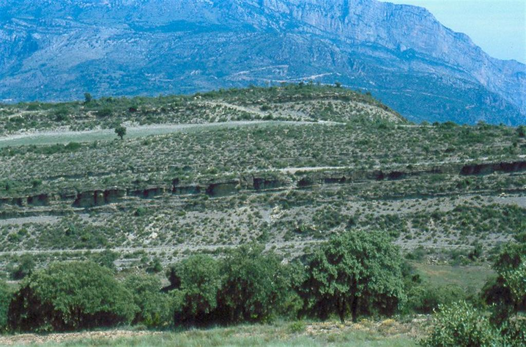 La Baronia de Sant Oïsme, l'Altera. Barras mareales cortadas longitudinalmente