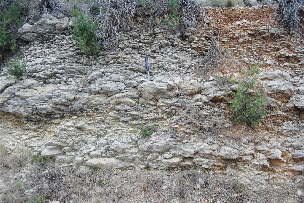 F-PT002c-03: Calizas nodulosas de Aptiense-Albiense inferior (Fm Llopis). Casas de Seguilí.