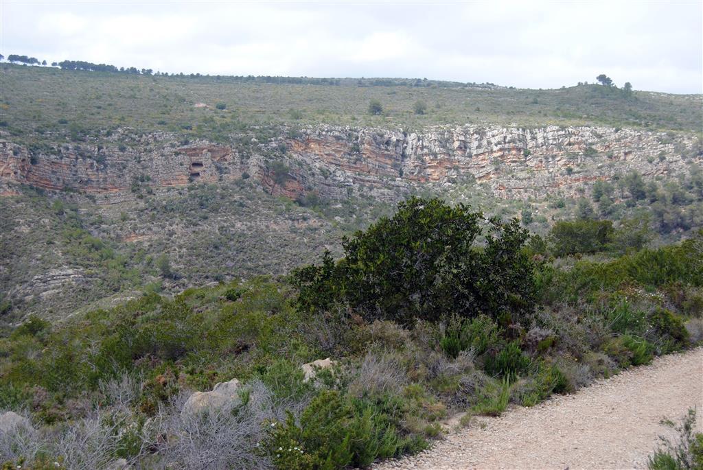 F-PT002e-06: Calizas grises de la Fm Jumilla, en el barranco de Martorell.