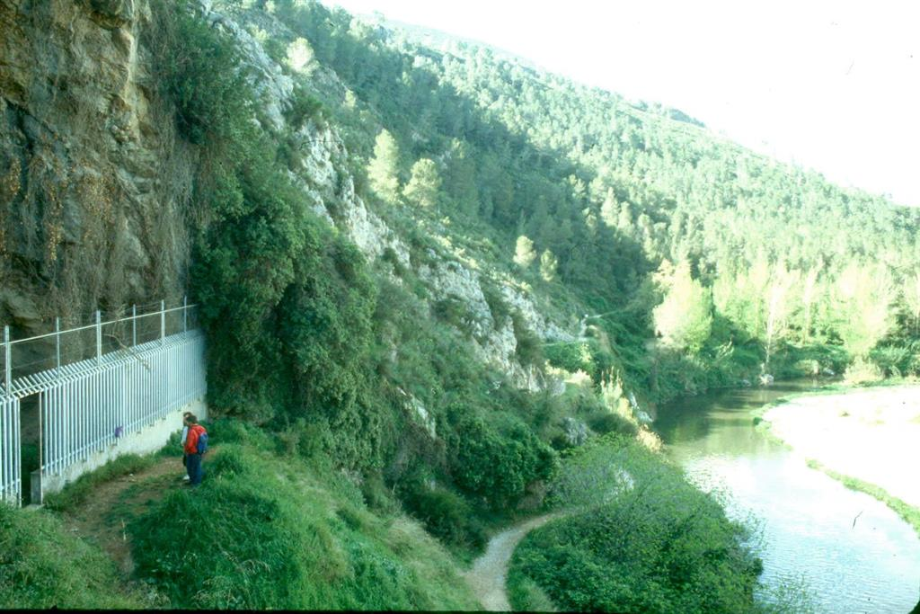 Cova Negra, vista que muestra la situación de la cavidad sobre el río Albaida (foto Jesús F. Jordá Pardo)
