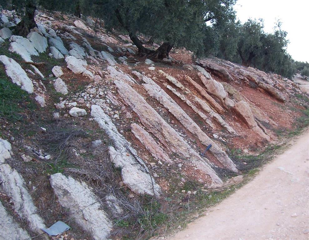 Cañada Hornillo. Parte inferior de la sucesión jurásica en facies ammonitico rosso en la Cañada del Hornillo, Unidad de Gaena, Sierra de Gaena (Córdoba).