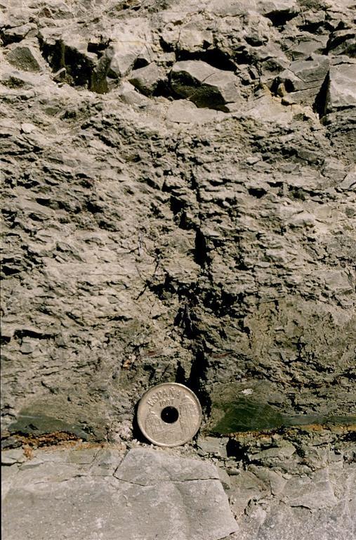 Detalle del nivel rojo de impacto (base de la moneda) y de la arcilla oscura del límite K/T de Caravaca