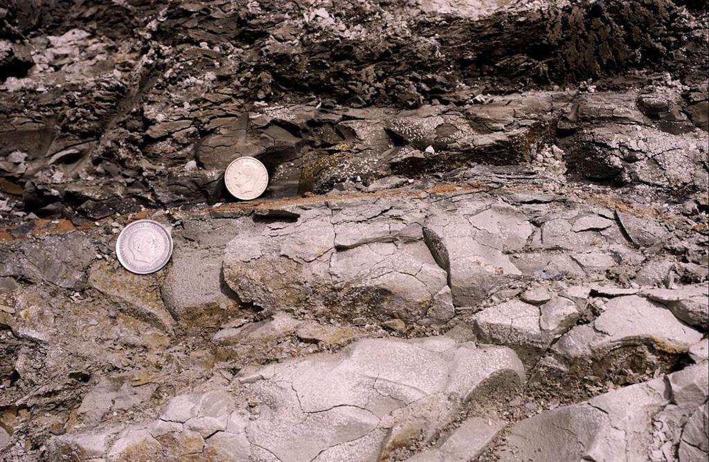 Detalle de las margas del Cretácico (Maastrichtiense), el nivel rojo de impacto (entre monedas) y arcilla oscura del límite K/T de Caravaca