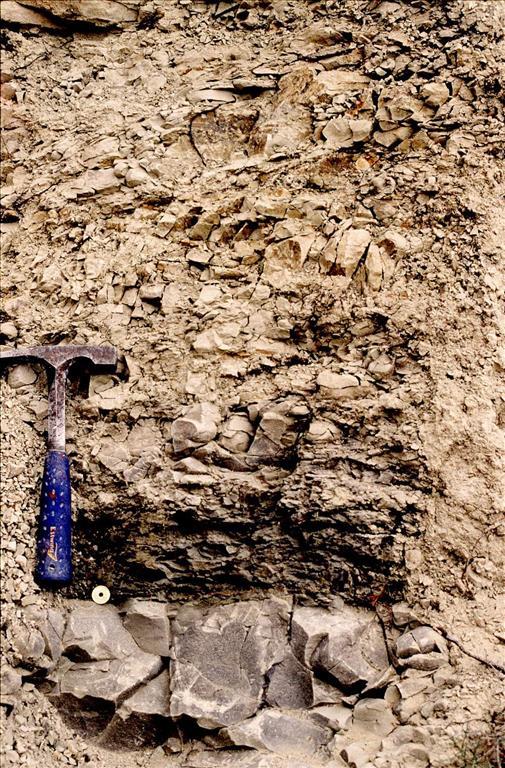 Detalle de las margas del Cretácico (Maastrichtiense), el nivel rojo de impacto (moneda) y arcilla oscura del límite K/T (martillo) y margocalizas