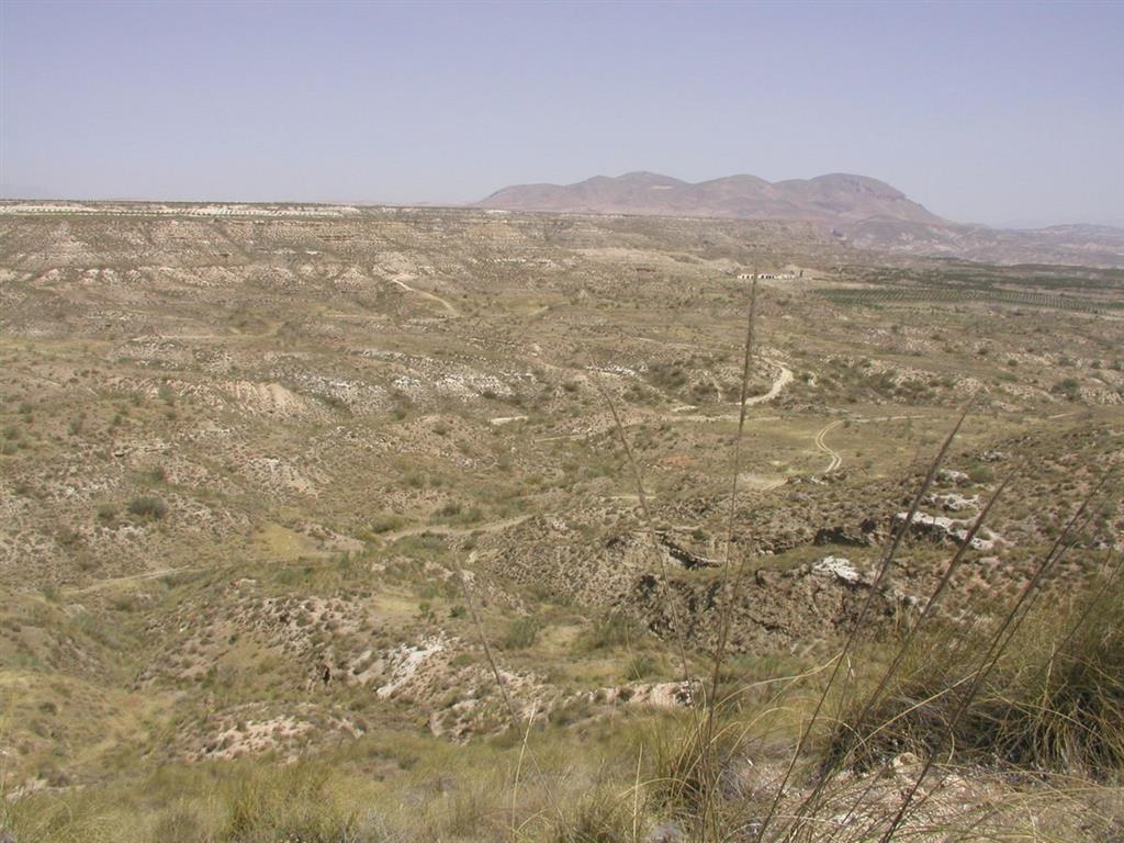 Vista general de la zona donde se encuentra situado el yacimiento de Fonelas P-1 (foto Alfonso Arribas Herrera)
