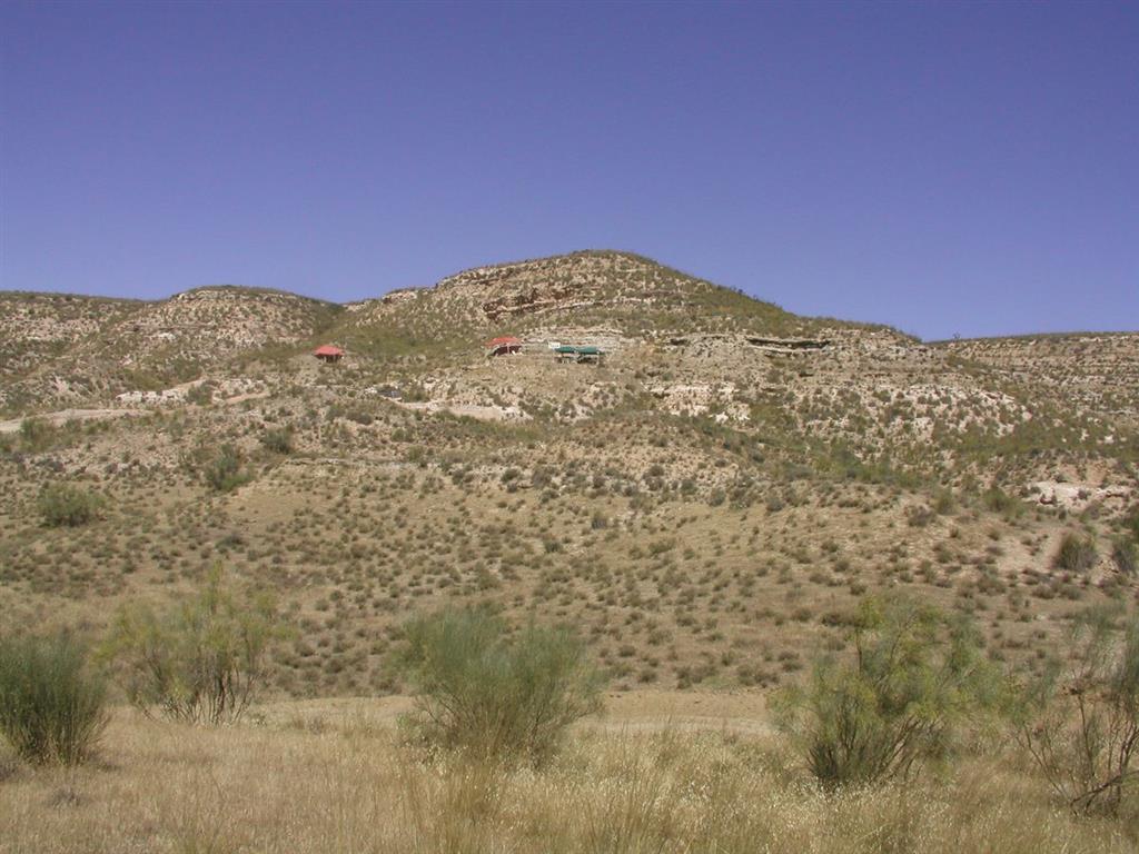 Ladera del Barranco del Pocico con el yacimiento de Fonelas P-1 al fondo durante la campaña de excavación de 2004 (foto Alfonso Arribas Herrera)