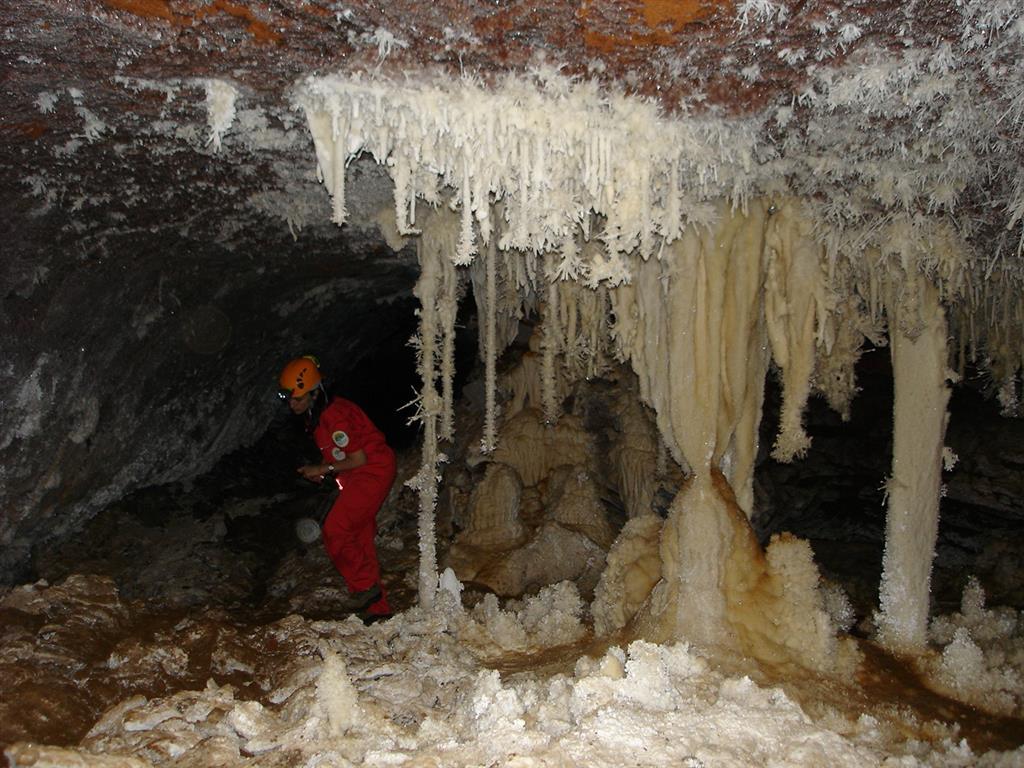 Estalactitas, estalagmitas, columnas y otros espeleotemas que se pueden observar en la Sala del Jardín de la Cueva del Castañar y guía que acompaña los visitantes.