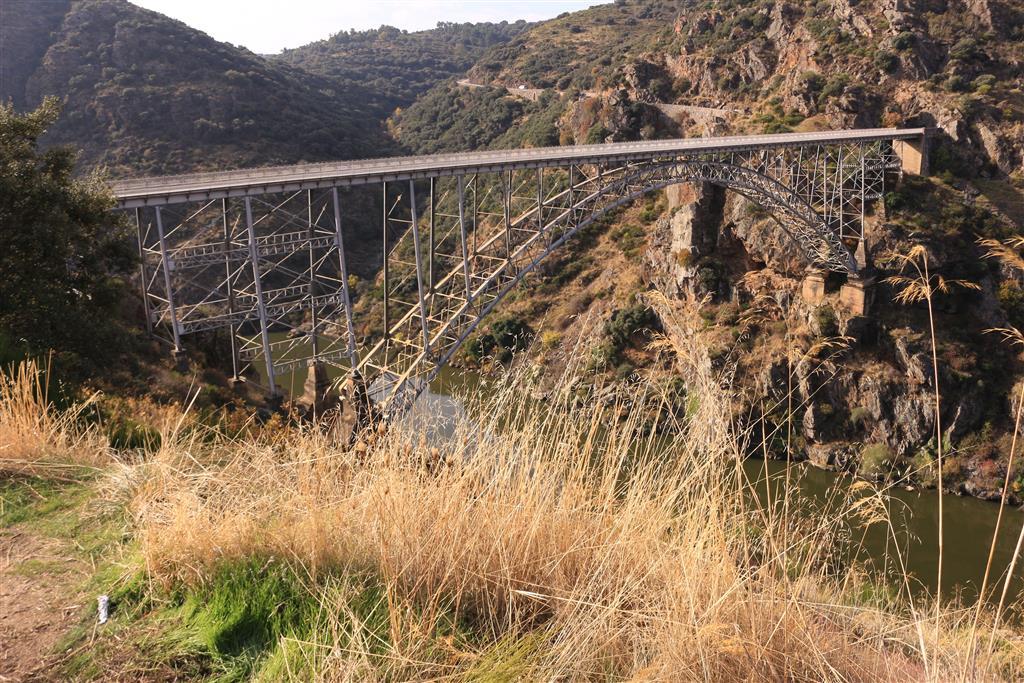 El puente-viaducto de Requejo, en el inicio de Las Arribes supuso en su tiempo la comunicación entre las comarcas zamoranas de Sayago y Aliste, puesto que con anterioridad, la conexión entre ambos territorios consistía en una barca que navegaba entre Pino y Villadepera. Diseñado por José Eugenio Ribera en 1897, construido por La empresa asturiana Duro Felguera e inaugurado el 15 de septiembre de 1914, fue el de mayor luz, 120 m, y el de mayor altura, 90 m sobre río, de España de su época.