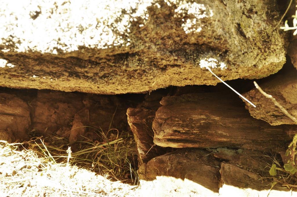 Afloramiento 3: Contacto entre el granito de Juzbado y los metasedimentos de la Fm. Aldeatejada (Complejo Esquisto-grauváquico)
