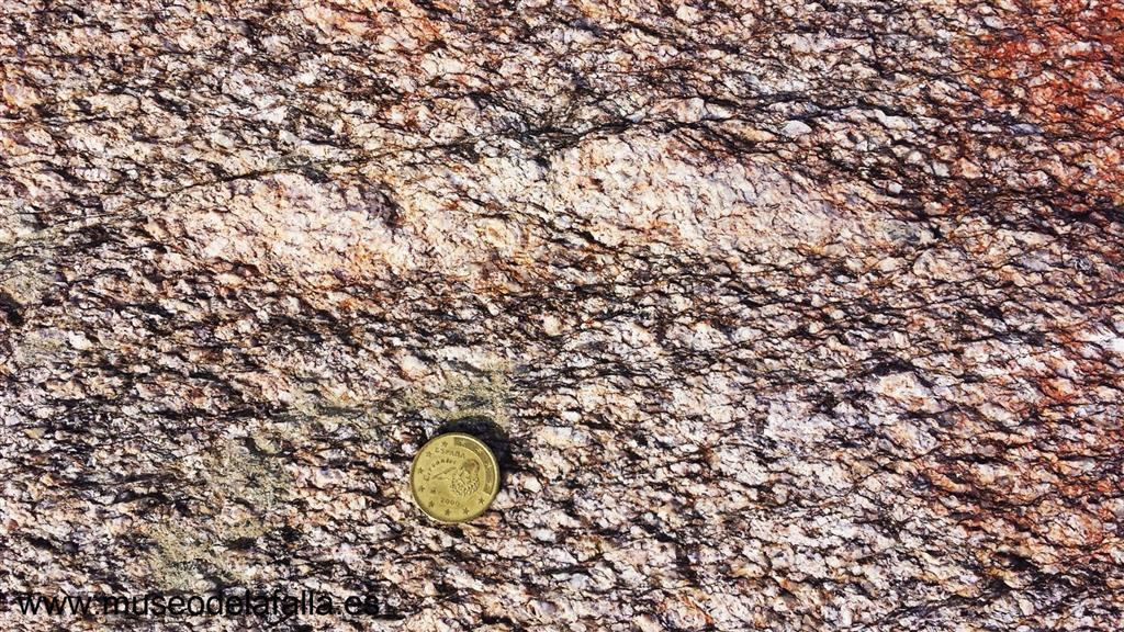 Afloramiento 5: Detalle de las fábricas miloníticas del granito de Juzbado.