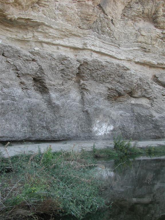 """Estrato yesífero mostrando estructura en yesos """"palisade"""" (hacia muro) y """"supercones"""" (hacia techo) en el afloramiento del Puente del Río Aguas"""