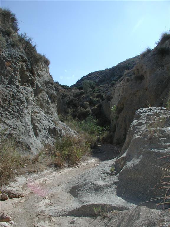 Vista general del afloramiento yesífero del Barranco de El Infierno. El pequeño curso fluvial ha excavado un barranco kárstico en los yesos del Miembro Yesares