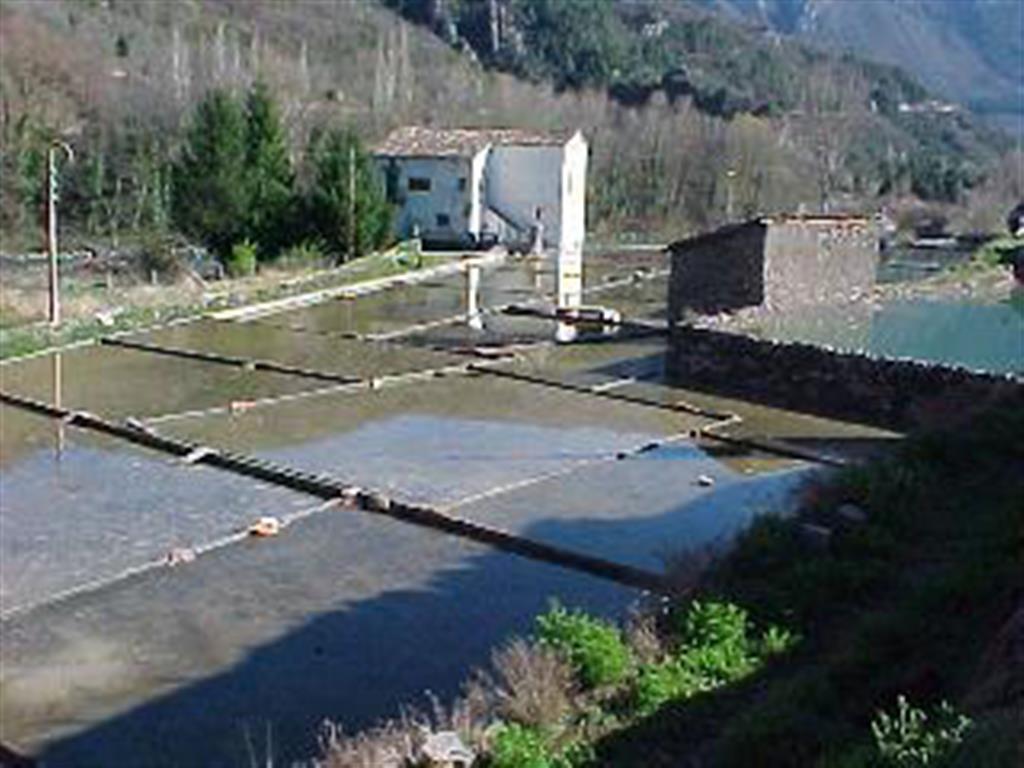 Las aguas subterráneas al atravesar los sedimentos evaporíticos, han dado lugar a una fuente de agua salada explotable.
