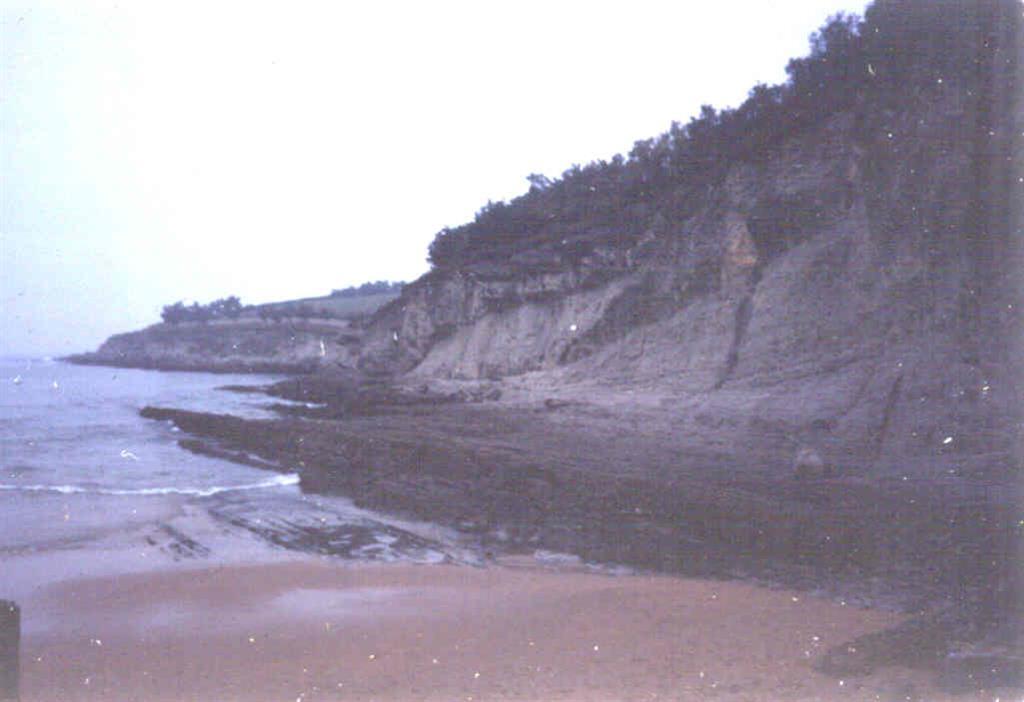 Margas, calizas arenosas y calizas arcillosas del Cretácico Superior al norte de las playas del Sardinero.