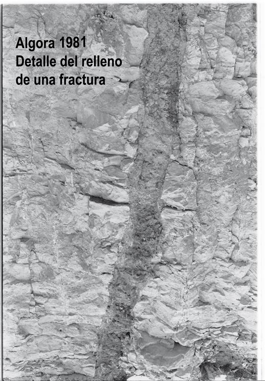 Algora 1981, detalle del relleno de una fractura.